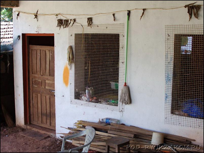 Куриные фермы в Гоа
