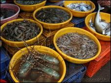 Рыбные рынки в Северном Гоа